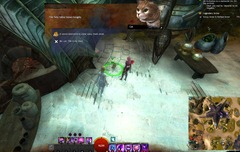 gw2-hungry-cats-locations-5
