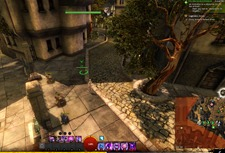 gw2-hungry-cats-locations-6