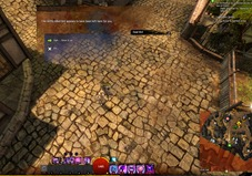 gw2-hungry-cats-locations-9
