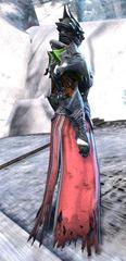 gw2-mursaat-robes-norn-female-2