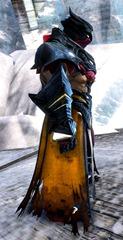 gw2-mursaat-robes-norn-male-2