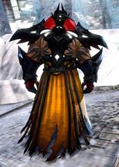 gw2-mursaat-robes-norn-male-3