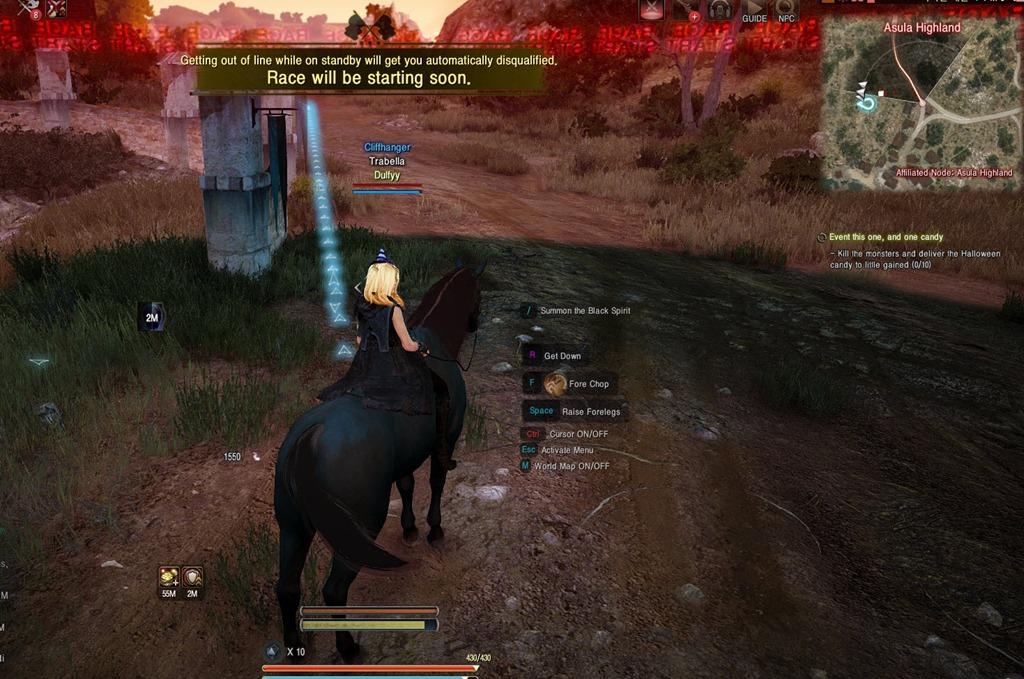 Black Desert Horse Racing Guide - Dulfy