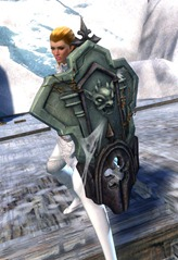 gw2-gargoyle-shield-skin-2