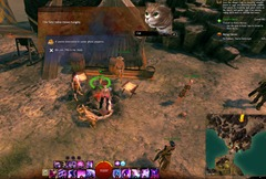 gw2-hungry-cats-ember-bay-2