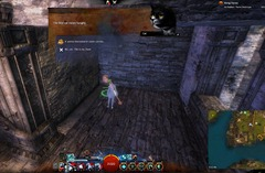 gw2-hungry-cats-revenant-2