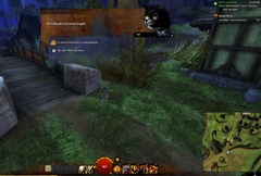 gw2-hungry-cats-warrior-2
