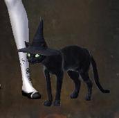 gw2-mini-feline-familiar