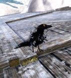 gw2-shadow-raven-tonic-2