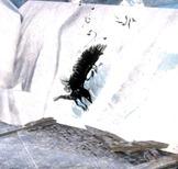 gw2-shadow-raven-tonic