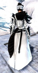 gw2-braham's-wolfblood-outfit-3