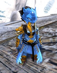 gw2-braham's-wolfblood-outfit-asura-female