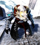gw2-braham's-wolfblood-outfit-charr-female-4