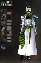 gw2-braham's-wolfblood-outfit-dye-pattern-female-2