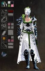 gw2-braham's-wolfblood-outfit-dye-pattern-female