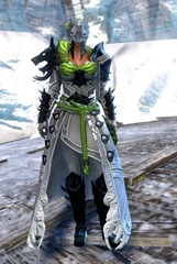 gw2-braham's-wolfblood-outfit-norn-female