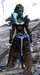 gw2-braham's-wolfblood-outfit-sylvari-female-4