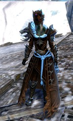 gw2-braham's-wolfblood-outfit-sylvari-female
