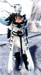 gw2-braham's-wolfblood-outfit