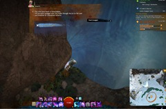 gw2-quirky-quaggan-quest-achievement-guide-14
