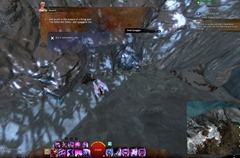 gw2-quirky-quaggan-quest-achievement-guide-5