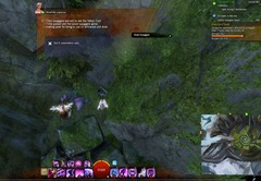 gw2-quirky-quaggan-quest-achievement-guide-7