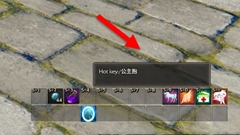 ro-new-player-guide-68