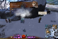 gw2-frozen-cats-guide-8