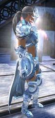 gw2-ice-encasement-outfit-norn-female-2