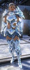 gw2-ice-encasement-outfit-norn-female-4