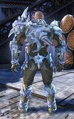 gw2-ice-encasement-outfit-norn-male-3