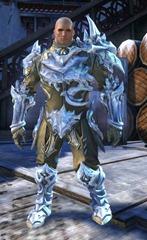 gw2-ice-encasement-outfit-norn-male-4