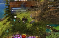 gw2-open-letters-current-events-achievement-guide-11