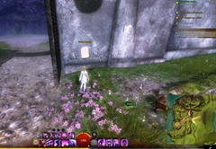 gw2-open-letters-current-events-achievement-guide-6