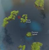 bdo-coral's-grave