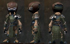 gw2-rox's-pathfinder-outfit-asura