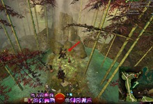 gw2-dreams-of-a-thorn-collection-guide-4