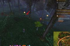gw2-friends-of-the-forest-achievement-guide-2
