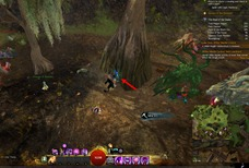gw2-not-all-who-wanderer-are-lost-5