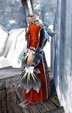 gw2-spring-promenade-outfit-norn-male-2