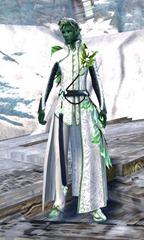 gw2-spring-promenade-outfit-sylvari-male