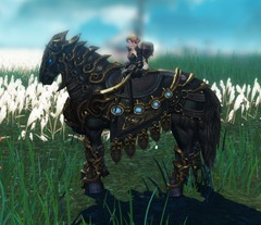 ro-golden-war-horse