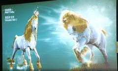 bdo-dine-horse