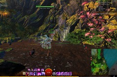 gw2-druid-stone-achievement-guide-5