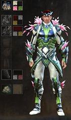 gw2-kasmeer's-regal-outfit-dye-pattern-3