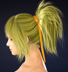 bdo-mystic-class-hairstyle-1-2