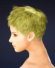 bdo-mystic-class-hairstyle-2-2
