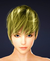 bdo-mystic-class-hairstyle-4-1