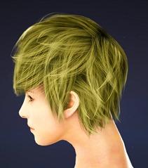 bdo-mystic-class-hairstyle-4-2