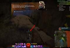 gw2-into-the-mind-of-madness-achievement-8